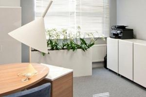 波兰Papstar办公室